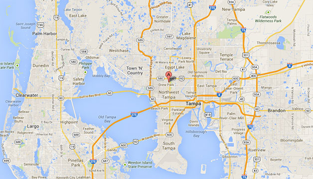 Map of Lee Fisher International, Inc.